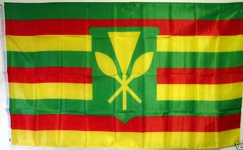 Hawaiian Flag (3'x5' KANAKA MAOLI HAWAII FLAG, Hawaiian Sovereignty banner)