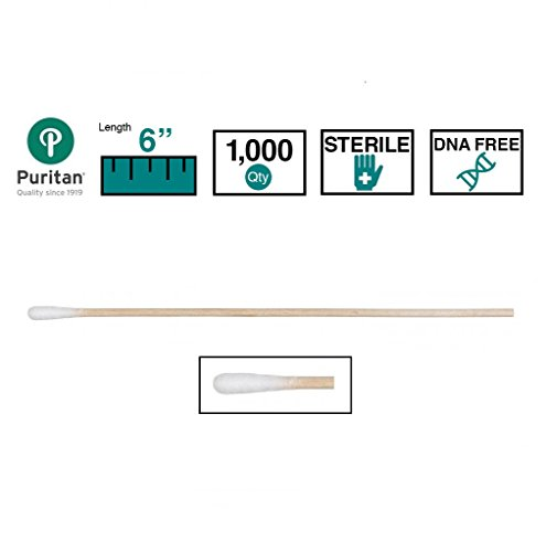 Puritan Cotton DNA / RNase Sterile Free Tipped Applicator with Wood Shaft (Case of 1000) by Puritan