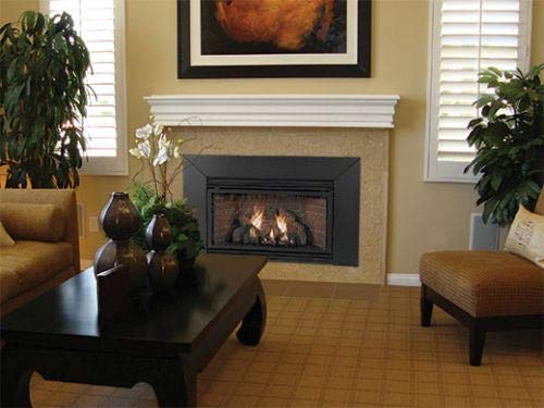Empire Comfort Fireplace Insert