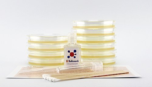 EZ BioResearch Bacteria Science Kit (I) : Pre-poured LB Agar Plates and Cotton Swabs, E-Book for Science Fair Project with Award Winning Experiments (Tips Tips Pipet Standard)