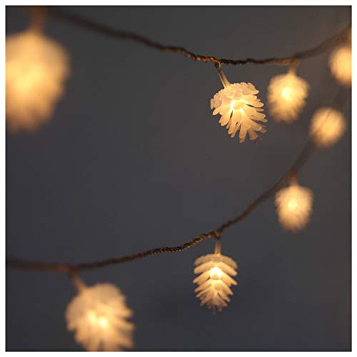 40 Warm White Led Fairy Lights Clear Cable in US - 2