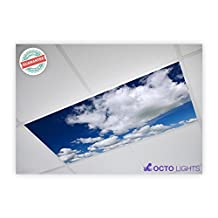 Cloud 019 2x4 Flexible Fluorescent Light Cover