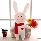 NOMSOCR Cute Soft Rabbit Stuffed Animal Plush Toys Gifts for Kids Girlfriend Birthday Xmas Gift (Height:13.7 inch)