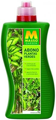 Abono para plantas verdes 1L Massó: Amazon.es: Jardín