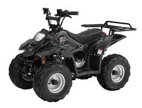 TaoTao - ATA-110B3 - Assembled Gas ATV 110cc Sport - Black