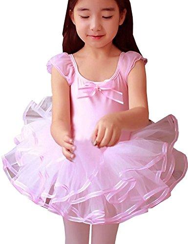 Little Girls' Tulle Ballet Dress Leotard Princess Party Tutu Skirt 5-6 T - Ballet Dolly