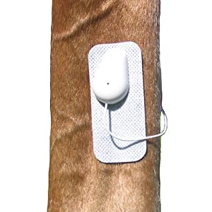 Microlief Under Wraps - Natural Pain Relief Therapy Patch for Equine Injury Prevention, Treatment, Recovery and Rehabilitation 1