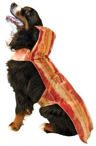 Bacon Dog Costumes (Bacon Dog Costume - Pet Costume)