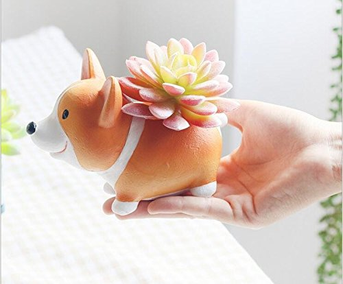 cuteforyou cute animal shaped cartoon home decoration succul