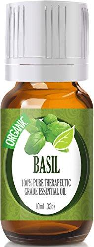 Василий (Organic) 100% Pure, лучших лечебно-Grade Эфирные масла - 10 мл