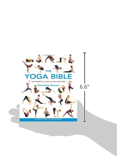The Yoga Bible: The Definitive Guide to Yoga: Amazon.es ...