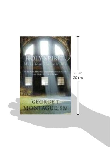 Holy Spirit, Make Your Home In Me : Biblical Meditations On Receiving The Gift Of The Spirit