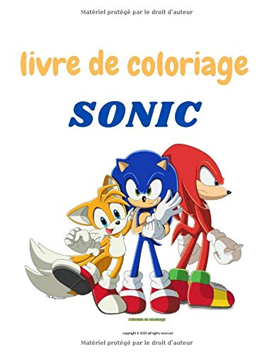 Livre De Coloriage Sonic Amazon Fr De Coloruage L Univers Livres