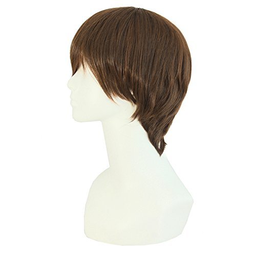 MapofBeauty Fashion Men's Short Straight Wig (Brown) - http://coolthings.us