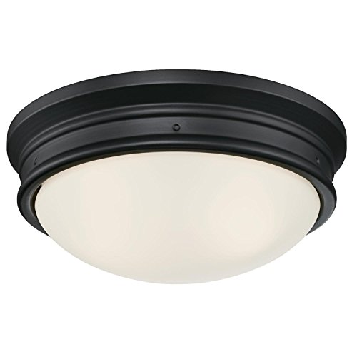 (Westinghouse Lighting 6324100 Meadowbrook Two-Light Indoor Flush-Mount Ceiling Fixture, Matte Black Finish with Frosted Glass, )