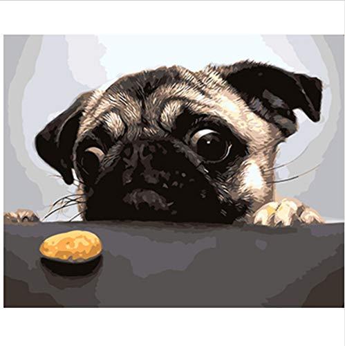 CZYYOU Bilder Malen Und Kalligraphie DIY Malerei by Zahlen Von Hund Tierölgemälde Wohnkultur 40x50cm -Rahmenlos B07P9ZRZLB | In hohem Grade geschätzt und weit vertrautes herein und heraus