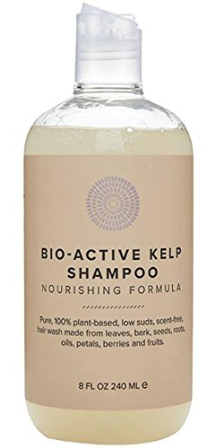 Bio Based Foam - Hairprint - 100% Plant-Based/All Natural Bio-Active Kelp Shampoo (8 fl oz/240 ml)