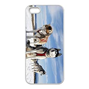Eight Below Hight Quality Plastic Case for Iphone 5s