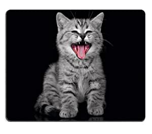 Funny Gray Kitten cat kitty Mouse Pads Customized Made to Order Support Ready 9 7/8 Inch (250mm) X 7 7/8 Inch (200mm) X 1/16 Inch (2mm) High Quality Eco Friendly Cloth with Neoprene Rubber Liil Mouse Pad Desktop Mousepad Laptop Mousepads Comfortable Computer Mouse Mat Cute Gaming Mouse pad