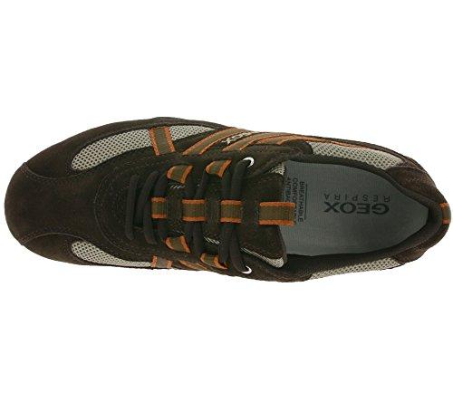 Scarpe Snake 43 Turnschuhe S Ginnastica U Sneaker da amp; Sneaker Donna Geox Herren da Brown 15709 Schuhe 5qwtacx