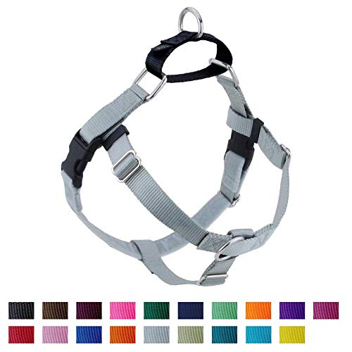 2 Hounds Design Freedom No-Pull No Leash Harness Only, 1-Inch, Medium, Silver