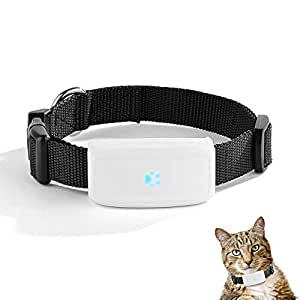 COL PETTI Pet Tracker GPS, Ajustable Collar Impermeable Mini Gato Perro Mascota Impermeable GPS Tracker con iPhone/Android App Tracking Gratis: Amazon.es: ...