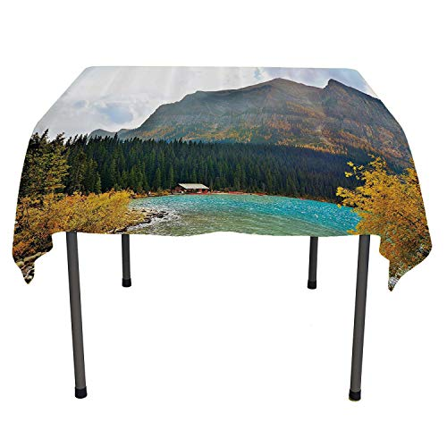Americana Landscape Decor Dining Table Cover Lake Louise Art in Winter Day National Canadian Peaceful Habitat Green Blue All Weather Outdoor Table Cloth Spring/Summer/Party/Picnic 50 by 80 (Hotels National Canadian)