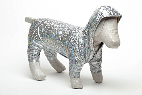 Dog Jumper Chameleon - Chameleon Pet Costume