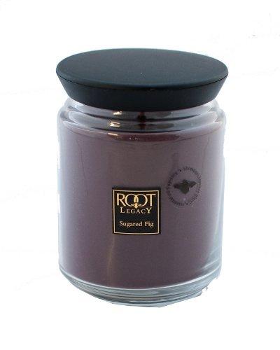 高質で安価 ルートキャンドルQueen Bee Jar B01MSKT7QB Large Jar Sugared Fig Sugared Candleルートキャンドルで、ワックス、パープル B01MSKT7QB, 有田焼の器 トゥルーコンセプト:dd20c4ee --- a0267596.xsph.ru