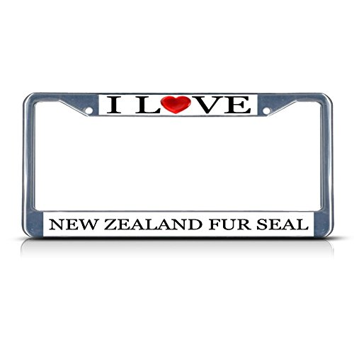 New Zealand Fur Seal - 6