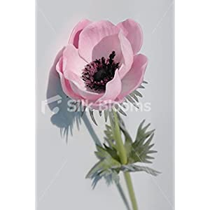 Single Artificial Fresh Touch Baby Pink Anemone, Silk Pink Poppy 27