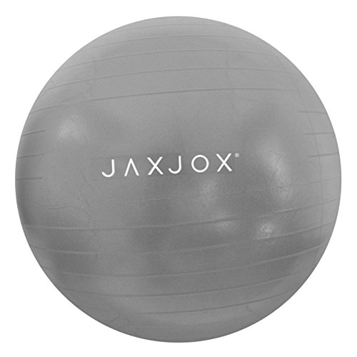 JAXJOX Balance Stability Gym/Swiss Ball 65cm (pump included), Grey