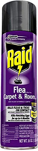 Raid Flea Killer Carpet and Room Spray, 16 OZ (Pack - ()