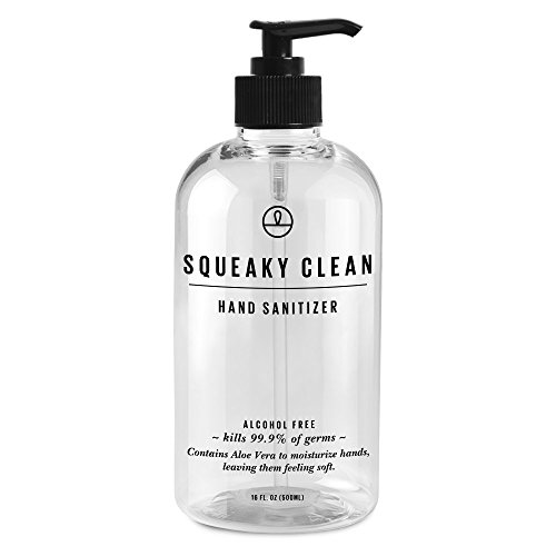 Squeaky Clean Alcohol Free Soap Instant Hand Sanitizer with Moisturising Aloe Vera 16oz. This Advanced Antibacterial Gel Comes in a Handy Pump Bottle Free Antibacterial