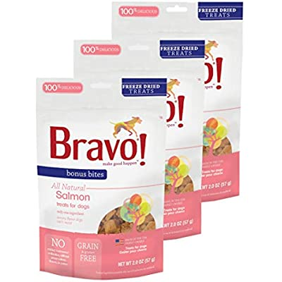 Bravo! Bonus Bites All Natural Freeze Dried Salmon Dog Treats - Grain & Gluten Free - 2 Ounce Bags