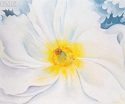 O Keeffe White Flower 1929 Canvas Art Print Reproduction 16 5x19 7 In 42x50 Cm Paintings Posters Prints Amazon Com
