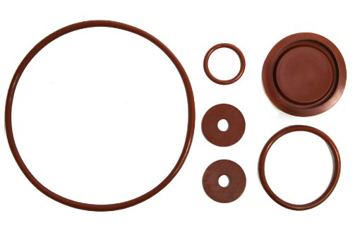 Chapin 6-8180 Piston Pump Repair Kit For Most Chapin Backpack (Backpack Piston Pump Sprayer)
