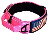 DOG COLLAR WITH CONTROL HANDLE QUICK RELEASE METAL BUCKLE HEAVY DUTY MILITARY STYLE 2' WIDTH NYLON WITH USA FLAG GREAT FOR HANDLING AND TRAINING LARGE CANINE MALE OR FEMALE K9 (806C-PINKTAC)