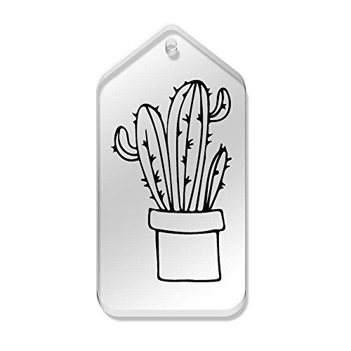 etichette mm X 66 di tg00059203 Pot' 'cactus 34 Azeeda 10 In chiare AXRqaTnT