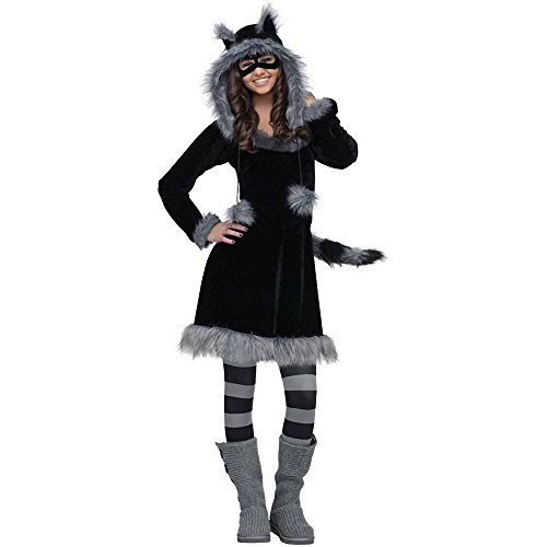 Fun World Sweet Raccoon Costume