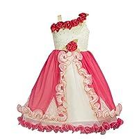 My Lil Princess Red Floral Stars_Net Fabric_1...