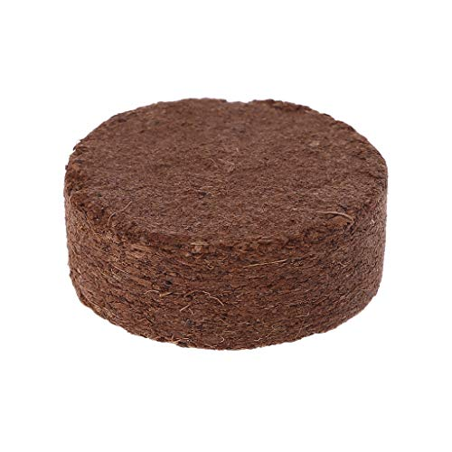 Qupida Coconut Fiber Substrate Bricks – Ideal for Amphibians and Reptiles – Non-Toxic, Odorless, Safe – Can Be Used Wet or ()