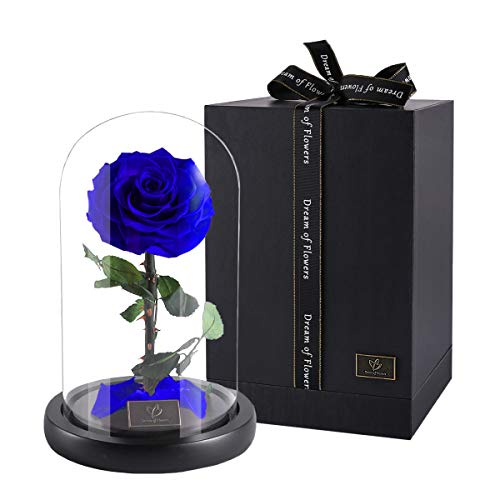 DREAM OF FLOWERS Beauty and The Beast Rose, Forever Rose, Enchanted Rose, Glass Dome Black Wood Base, Valentine's Party Gifts, Wedding Gifts, Best Gift for Her (Blue)
