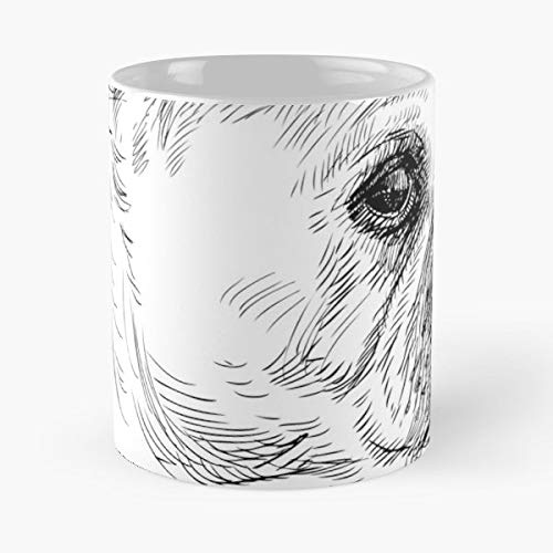 Pug Lover Love Dog Health Club Manager Coffee Mugs Unique Ceramic Novelty Cup