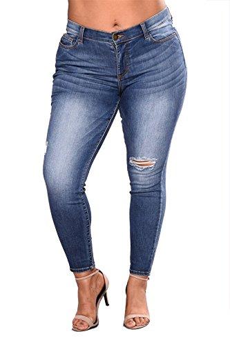 taille Skinny Dunland Jeans pantalon jean Stretch femme Size femme haute Jean pantalon Plus Leg en OvqwnOBfCx