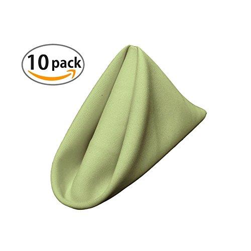 Sage Cloth (LA Linen 10-Pack Polyester Poplin Napkins 17 by 17-Inch, Sage)