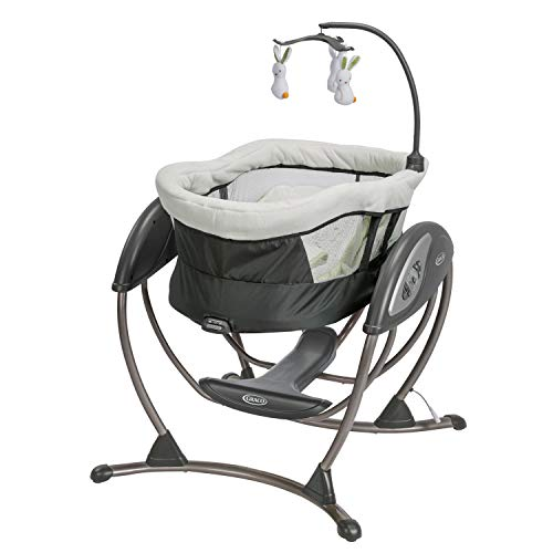 Graco DreamGlider Gliding Baby Swing, Rascal