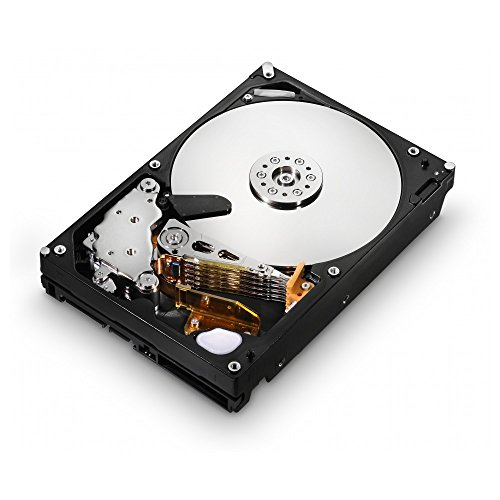 HGST Ultrastar 3.5-Inch 1TB 7200RPM SATA II 16 MB Cache Enterprise Hard Drive with 24x7 Duty Cycle (7200rpm 16mb Cache Bare Drive)