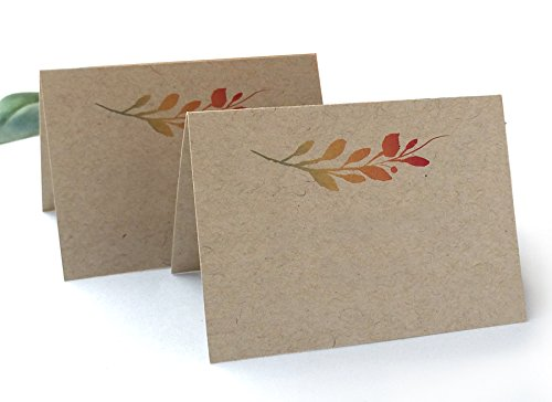 (20 Pack - Thanksgiving Name Cards - Thanksgiving Dinner Party Kraft Blank Place Cards (20) - Write Your Own Names - Pack of)