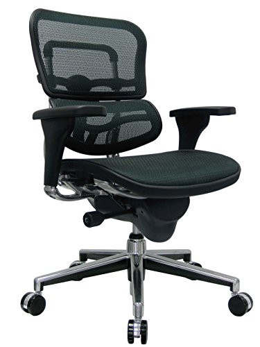Eurotech Seating Ergohuman ME8ERGLO-GREEN(N) Mid Back Mesh Swivel Chair, Green